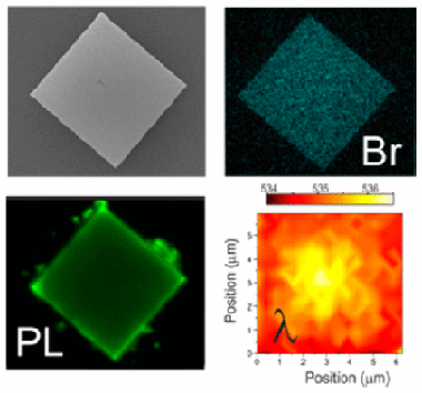 6bc930d8ca Organic lead halide perovskites have recently been proposed for  applications in light-emitting devices of different sorts.